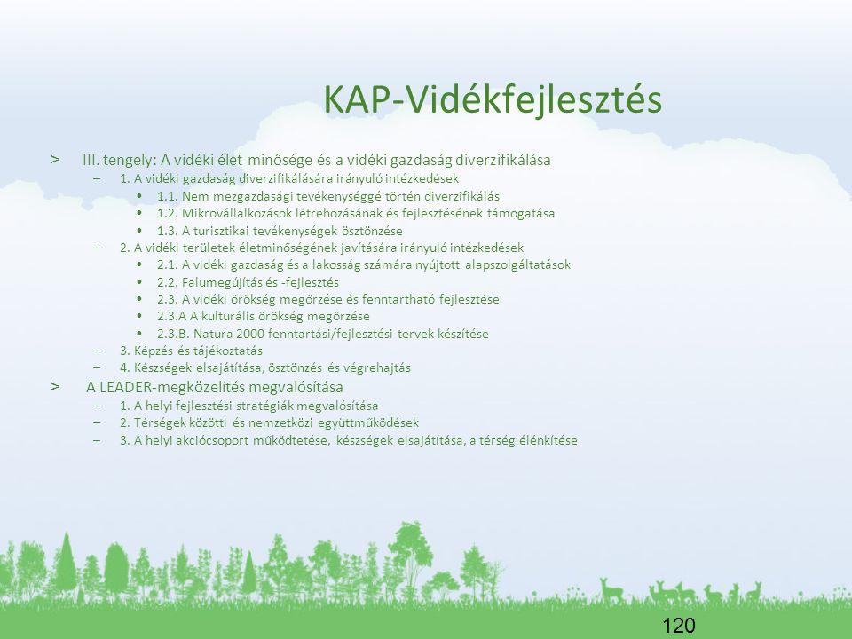 KAP-Vidékfejlesztés III. tengely: A vidéki élet minősége és a vidéki gazdaság diverzifikálása.