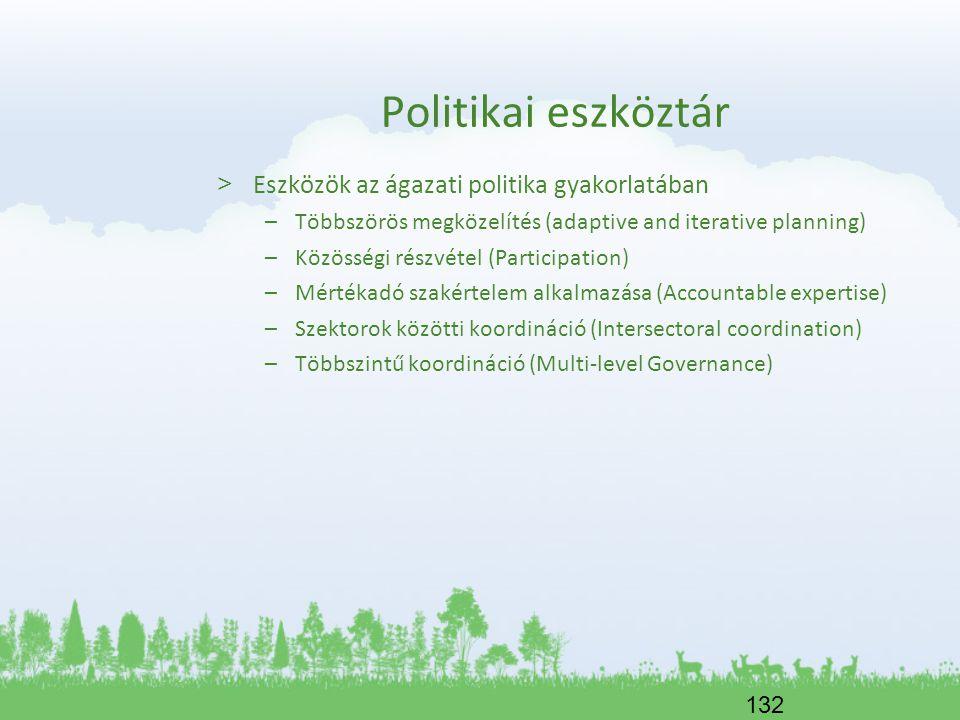 Politikai eszköztár Eszközök az ágazati politika gyakorlatában