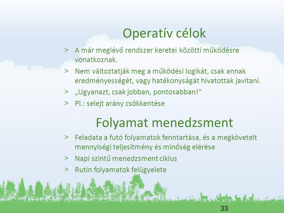 Operatív célok Folyamat menedzsment