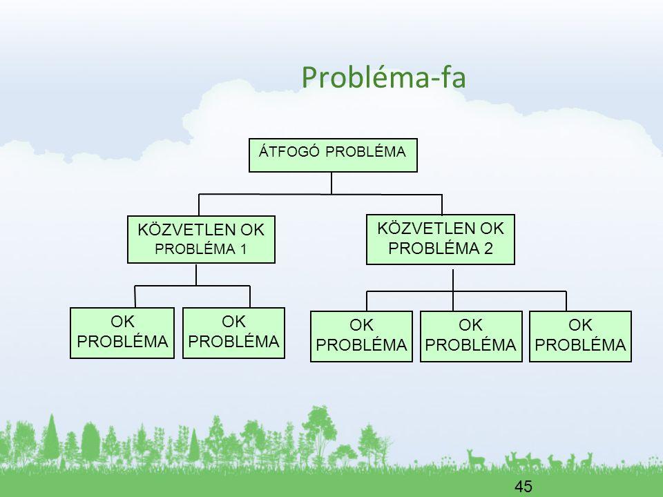 Probléma-fa KÖZVETLEN OK PROBLÉMA 1 KÖZVETLEN OK PROBLÉMA 2