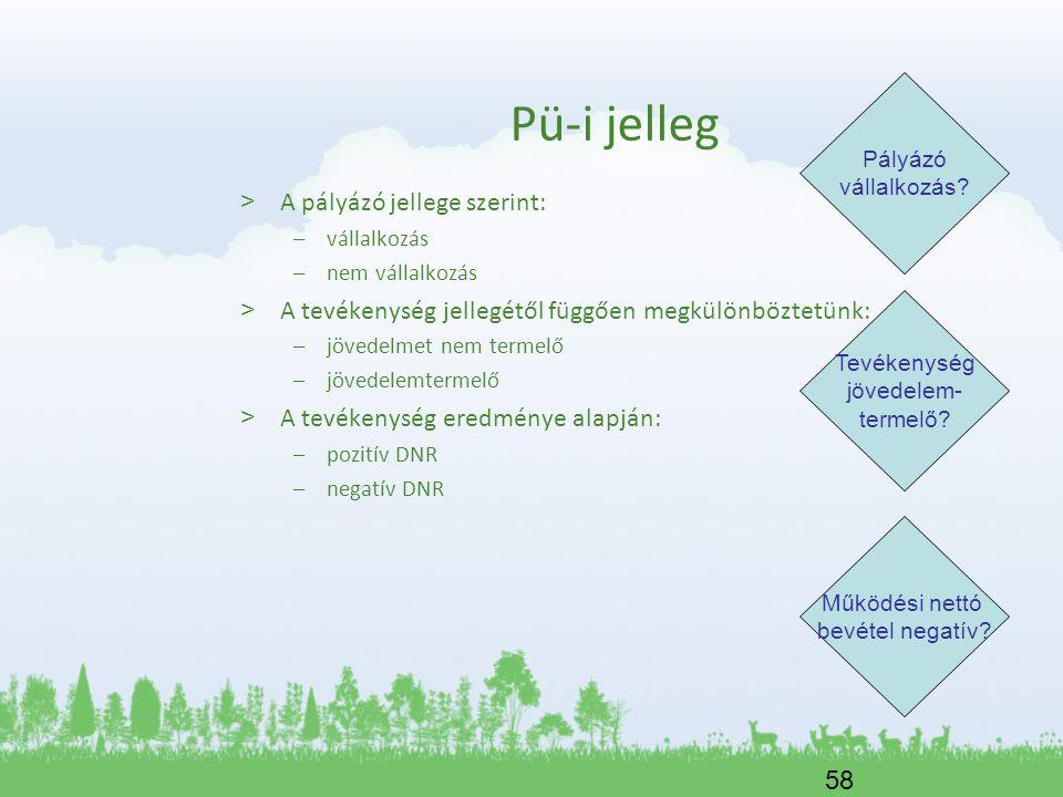 Pü-i jelleg A pályázó jellege szerint: