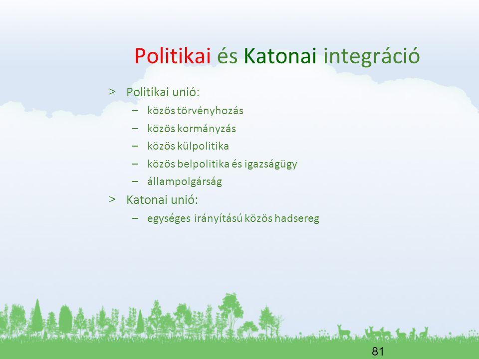 Politikai és Katonai integráció