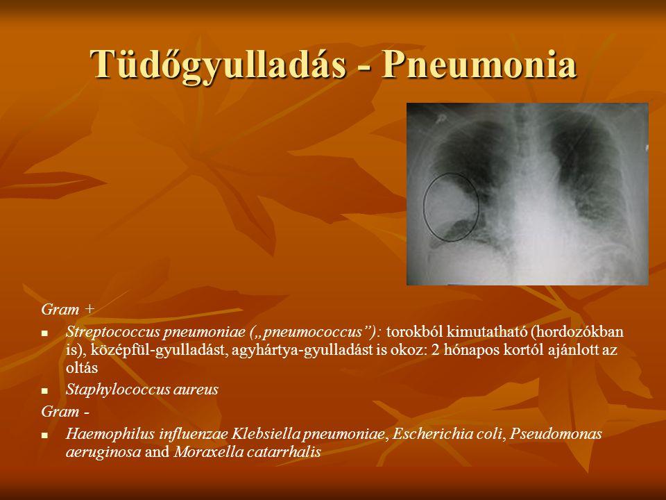Tüdőgyulladás - Pneumonia
