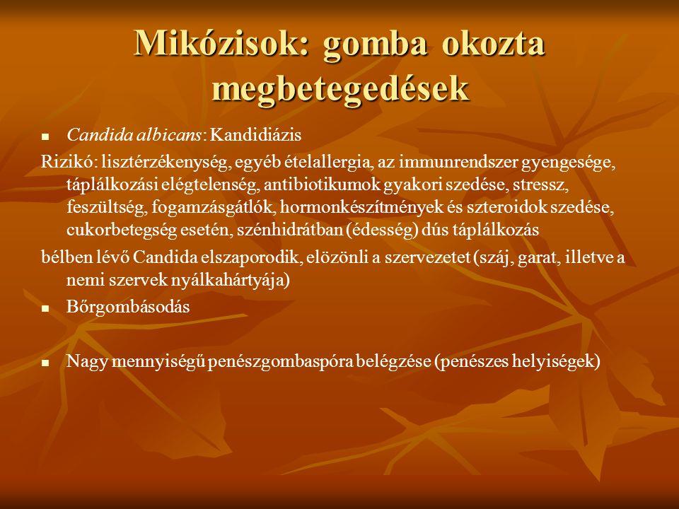 Mikózisok: gomba okozta megbetegedések