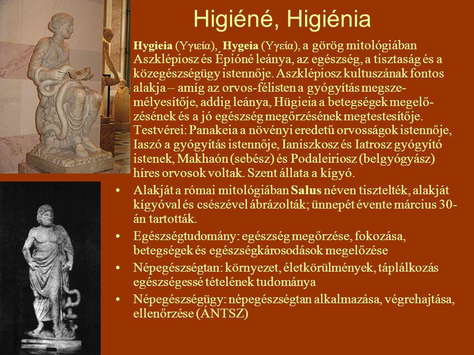 Higiéné, Higiénia