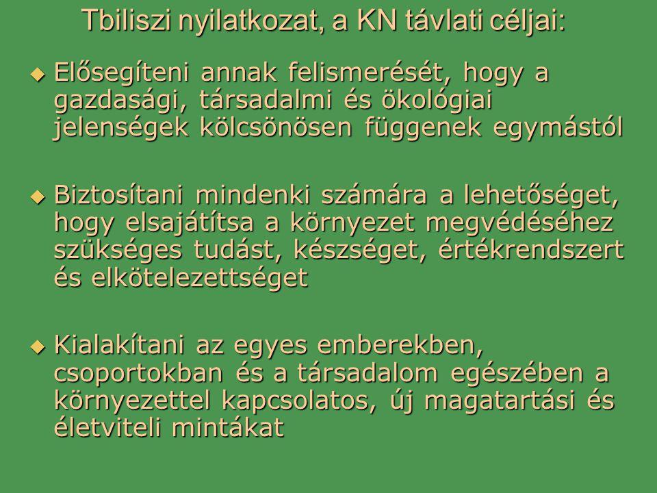 Tbiliszi nyilatkozat, a KN távlati céljai: