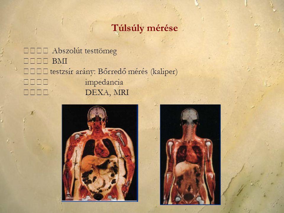Túlsúly mérése  Abszolút testtömeg  BMI