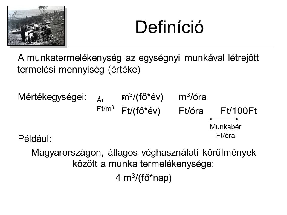 Definíció A munkatermelékenység az egységnyi munkával létrejött termelési mennyiség (értéke) Mértékegységei: m3/(fő*év) m3/óra.