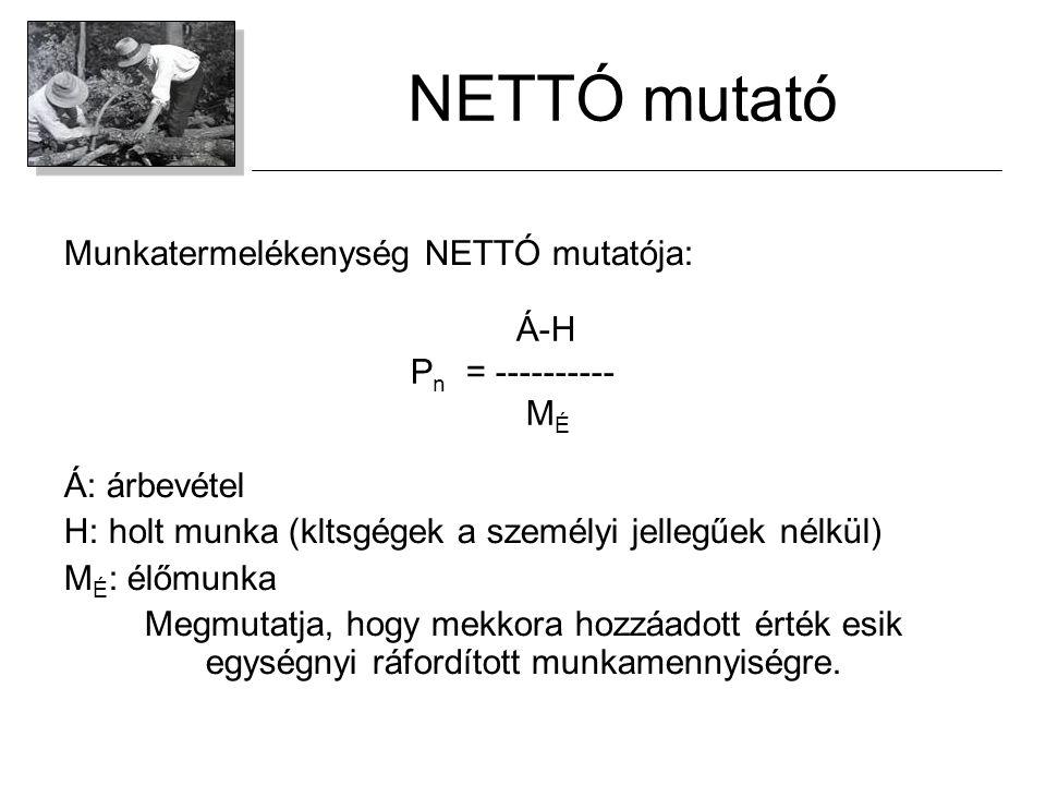 NETTÓ mutató Munkatermelékenység NETTÓ mutatója: Á-H Á: árbevétel