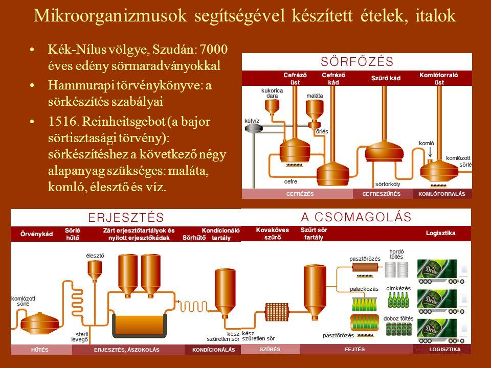 Mikroorganizmusok segítségével készített ételek, italok