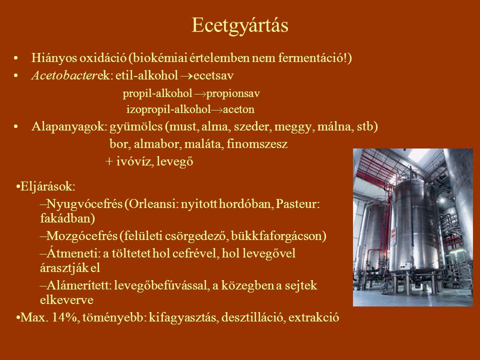 Ecetgyártás Hiányos oxidáció (biokémiai értelemben nem fermentáció!)