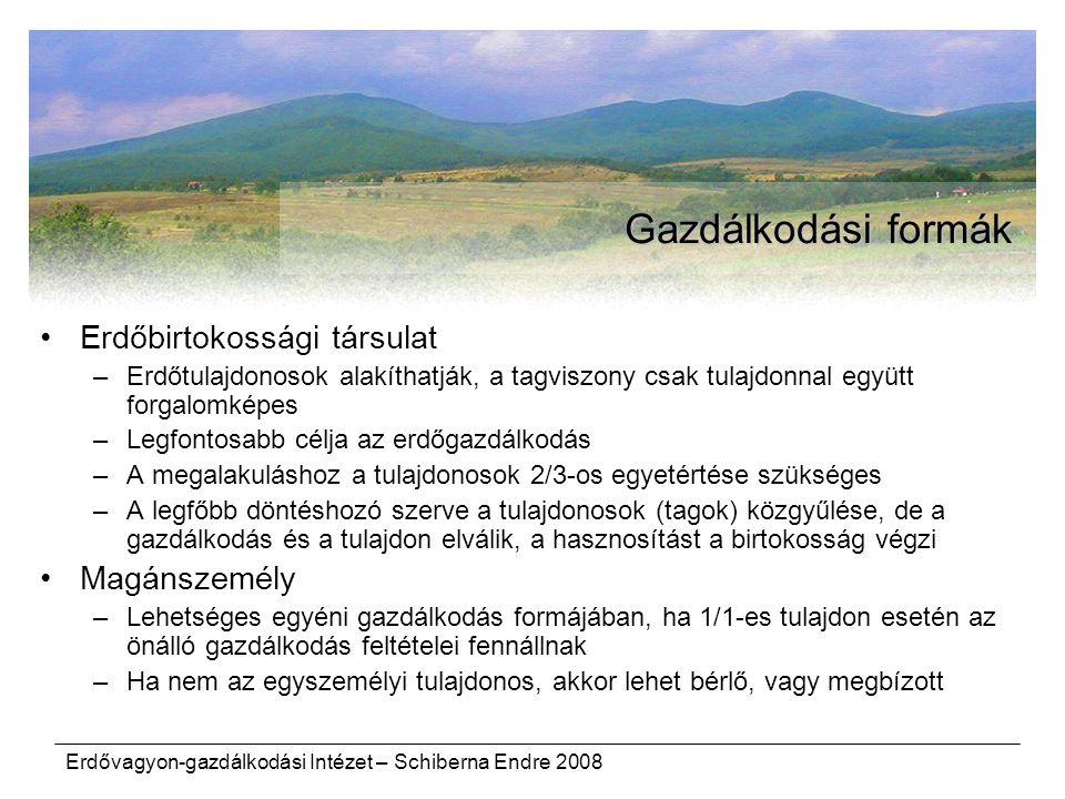 Gazdálkodási formák Erdőbirtokossági társulat Magánszemély
