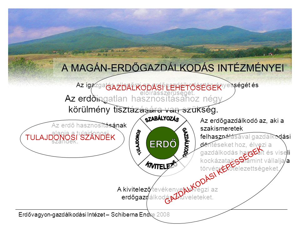 A MAGÁN-ERDŐGAZDÁLKODÁS INTÉZMÉNYEI