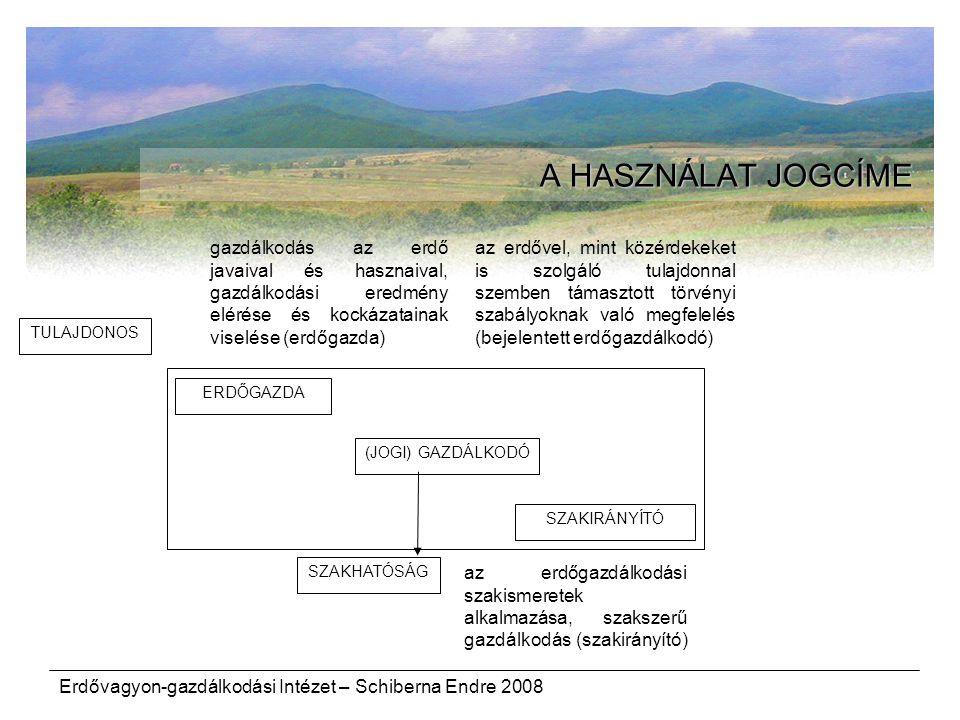 A HASZNÁLAT JOGCÍME gazdálkodás az erdő javaival és hasznaival, gazdálkodási eredmény elérése és kockázatainak viselése (erdőgazda)