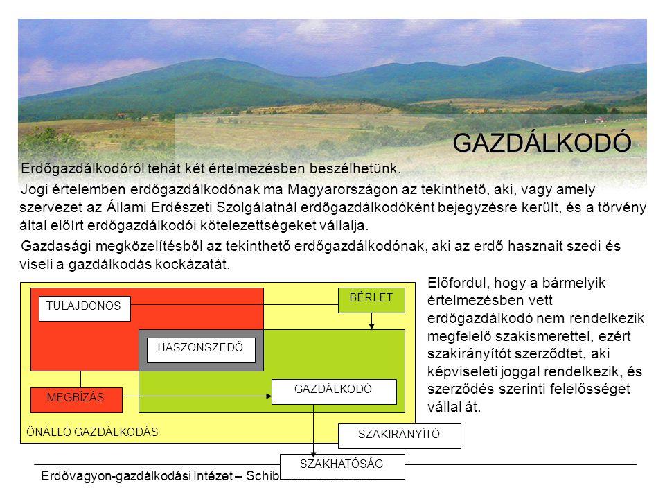 GAZDÁLKODÓ Erdőgazdálkodóról tehát két értelmezésben beszélhetünk.