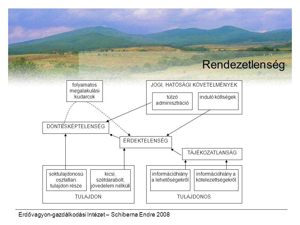 Rendezetlenség Erdővagyon-gazdálkodási Intézet – Schiberna Endre 2008