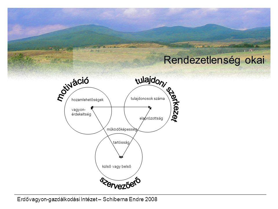 Rendezetlenség okai tulajdoni szerkezet motiváció szervezőerő