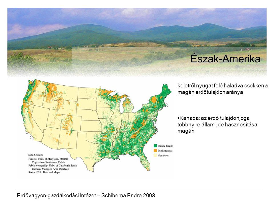 Észak-Amerika keletről nyugat felé haladva csökken a magán erdőtulajdon aránya. Kanada: az erdő tulajdonjoga többnyire állami, de hasznosítása magán.