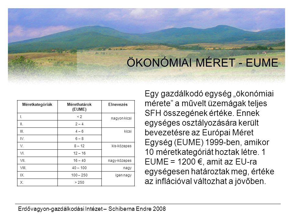 ÖKONÓMIAI MÉRET - EUME