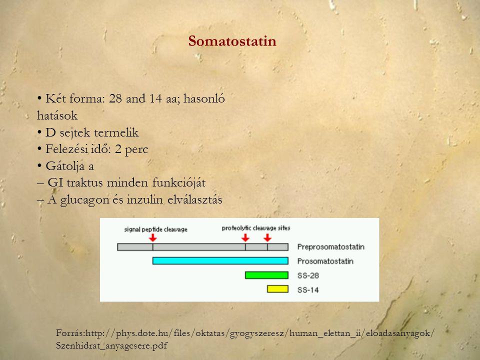 Somatostatin • Két forma: 28 and 14 aa; hasonló hatások