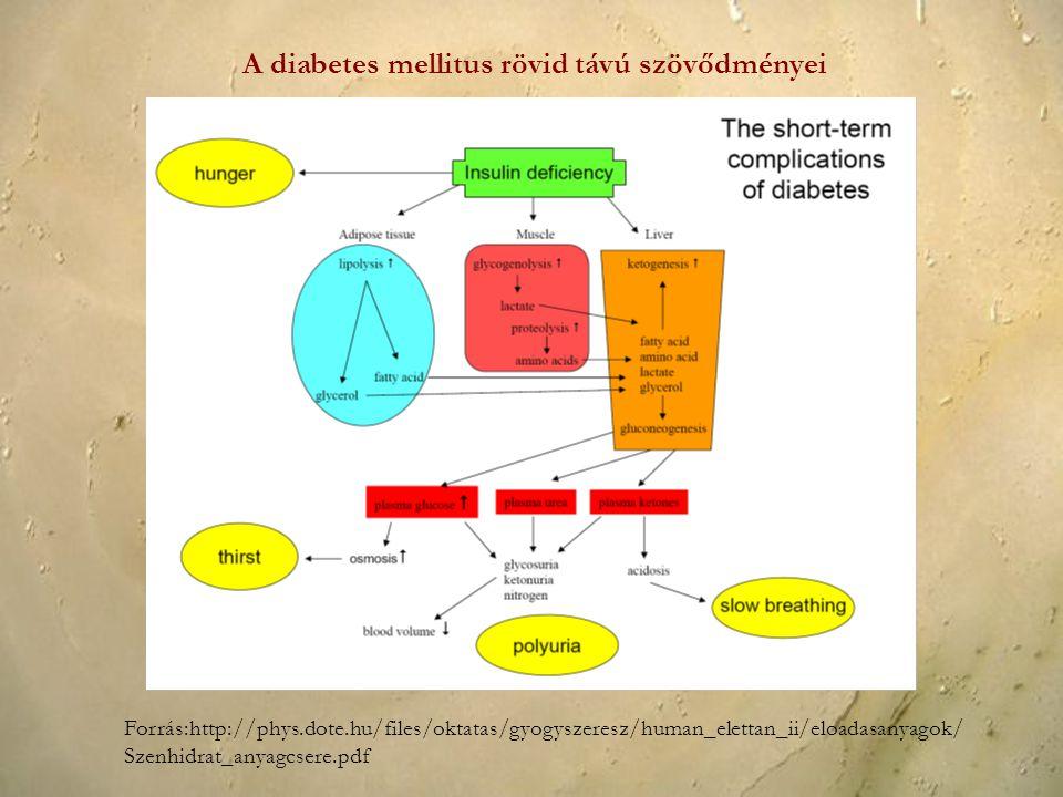 A diabetes mellitus rövid távú szövődményei