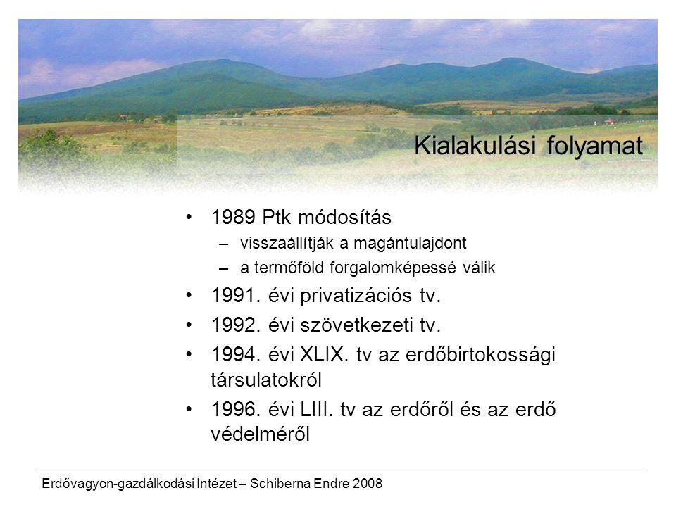 Kialakulási folyamat 1989 Ptk módosítás 1991. évi privatizációs tv.