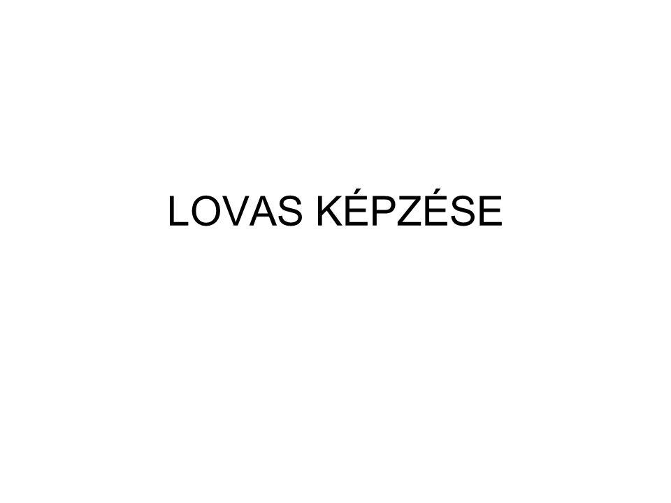 LOVAS KÉPZÉSE