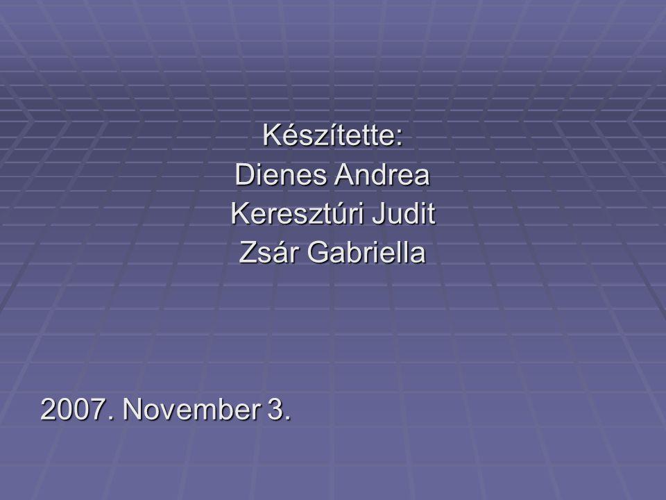 Készítette: Dienes Andrea Keresztúri Judit Zsár Gabriella 2007. November 3.
