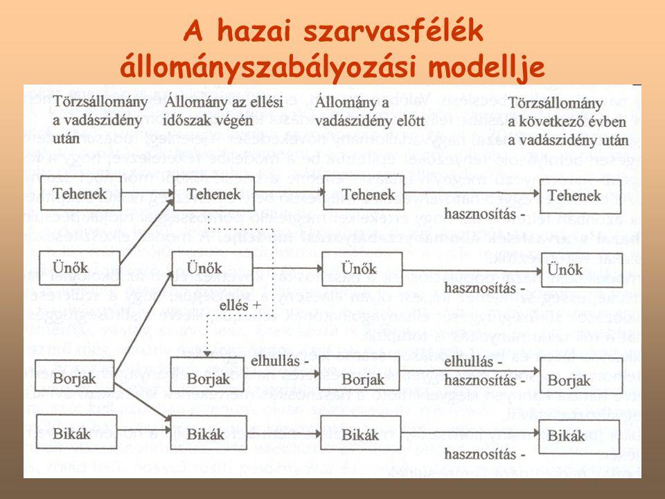 A hazai szarvasfélék állományszabályozási modellje