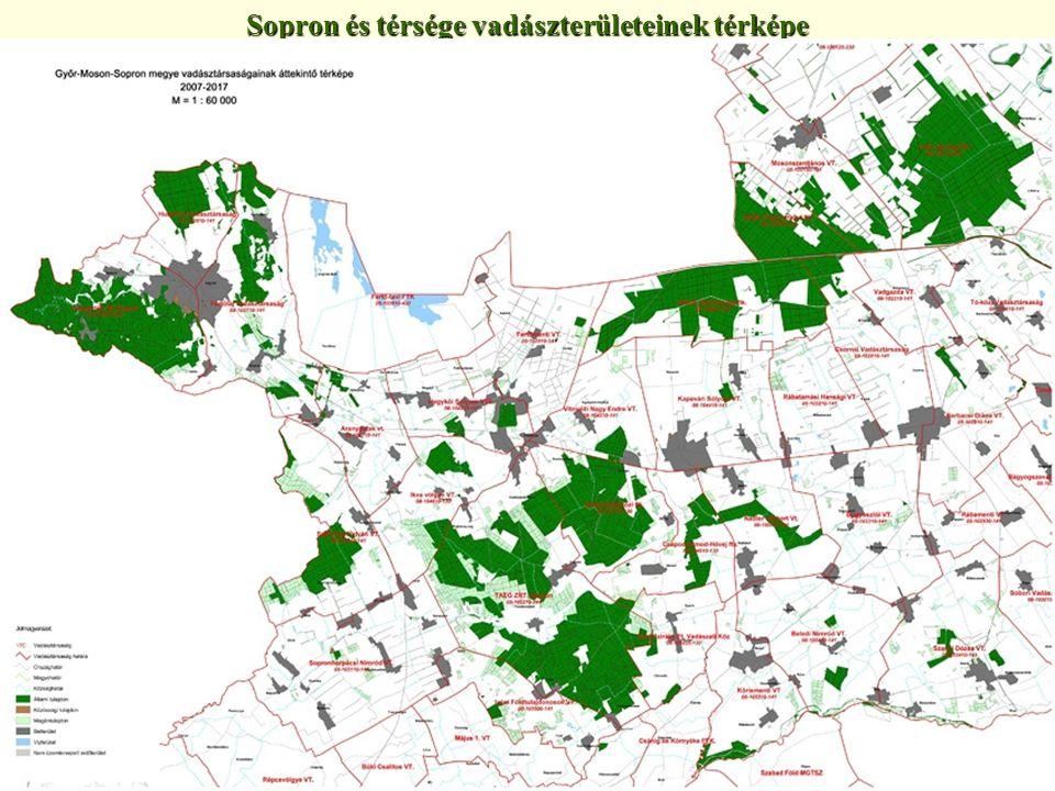 Sopron és térsége vadászterületeinek térképe