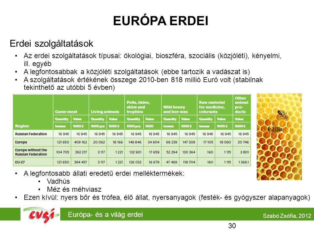 EURÓPA ERDEI Erdei szolgáltatások