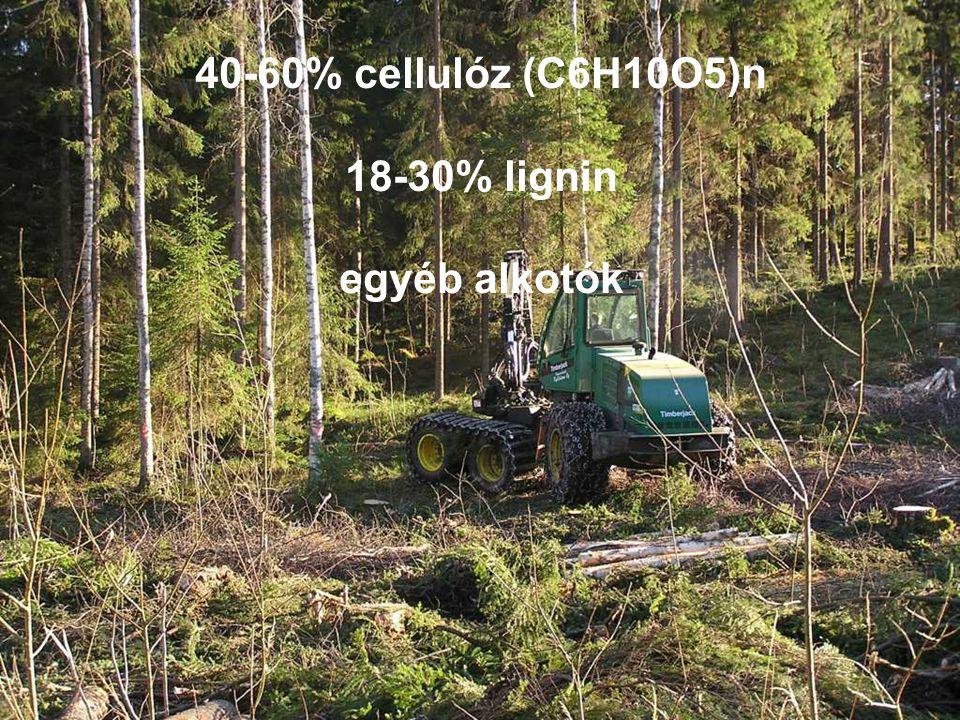 40-60% cellulóz (C6H10O5)n 18-30% lignin egyéb alkotók
