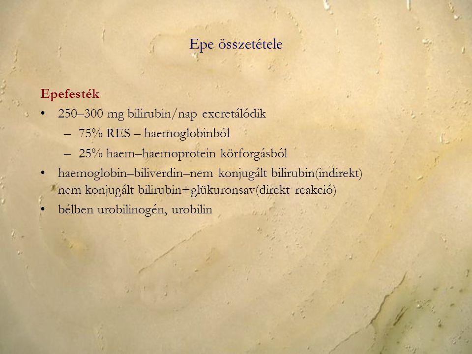 Epe összetétele Epefesték 250–300 mg bilirubin/nap excretálódik