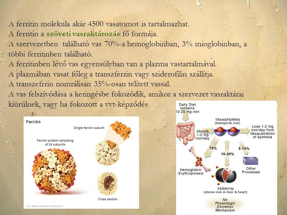A ferritin molekula akár 4500 vasatomot is tartalmazhat.