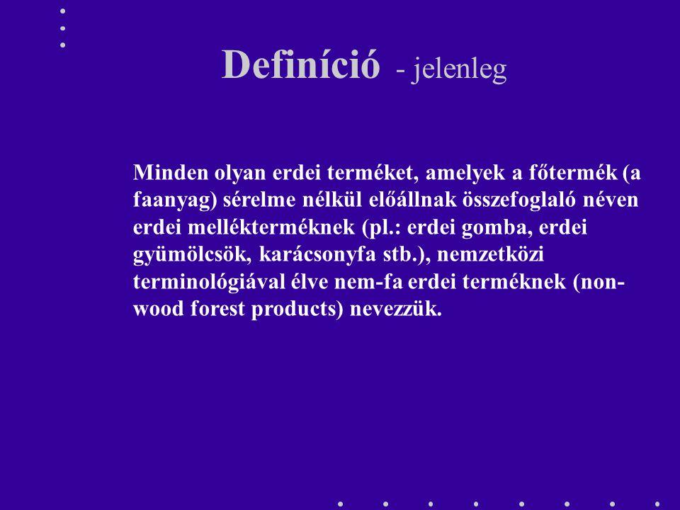 Definíció - jelenleg