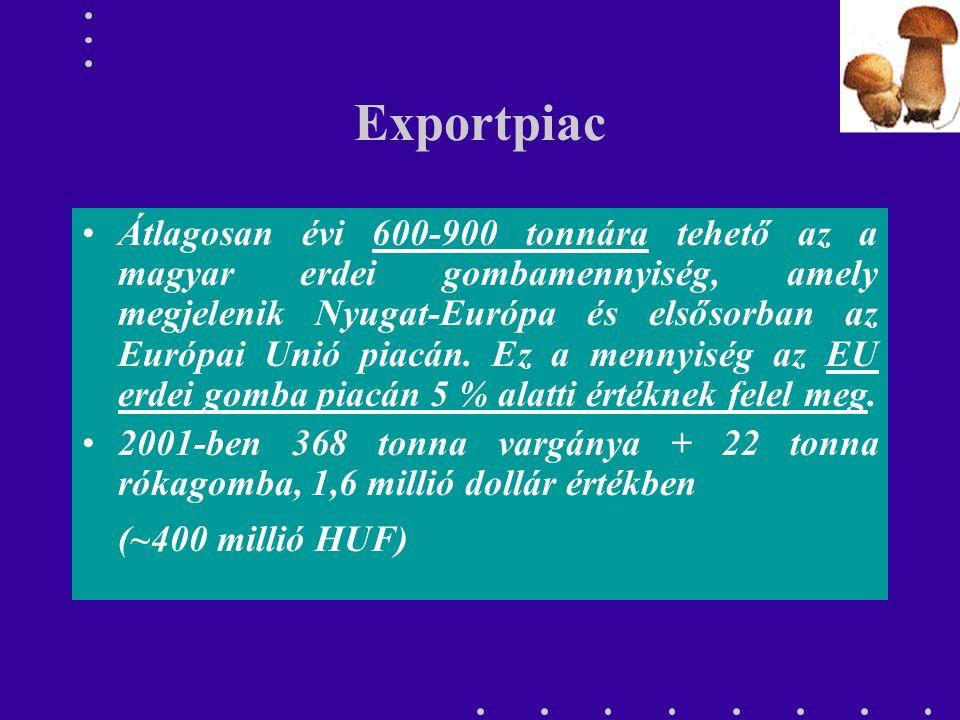 Exportpiac