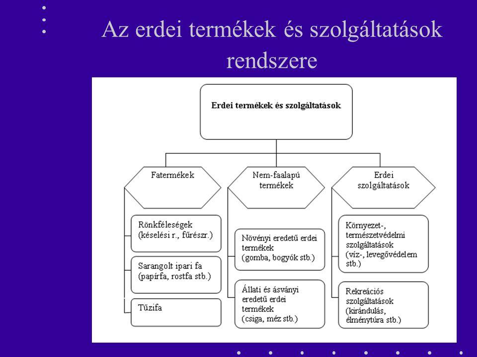 Az erdei termékek és szolgáltatások rendszere