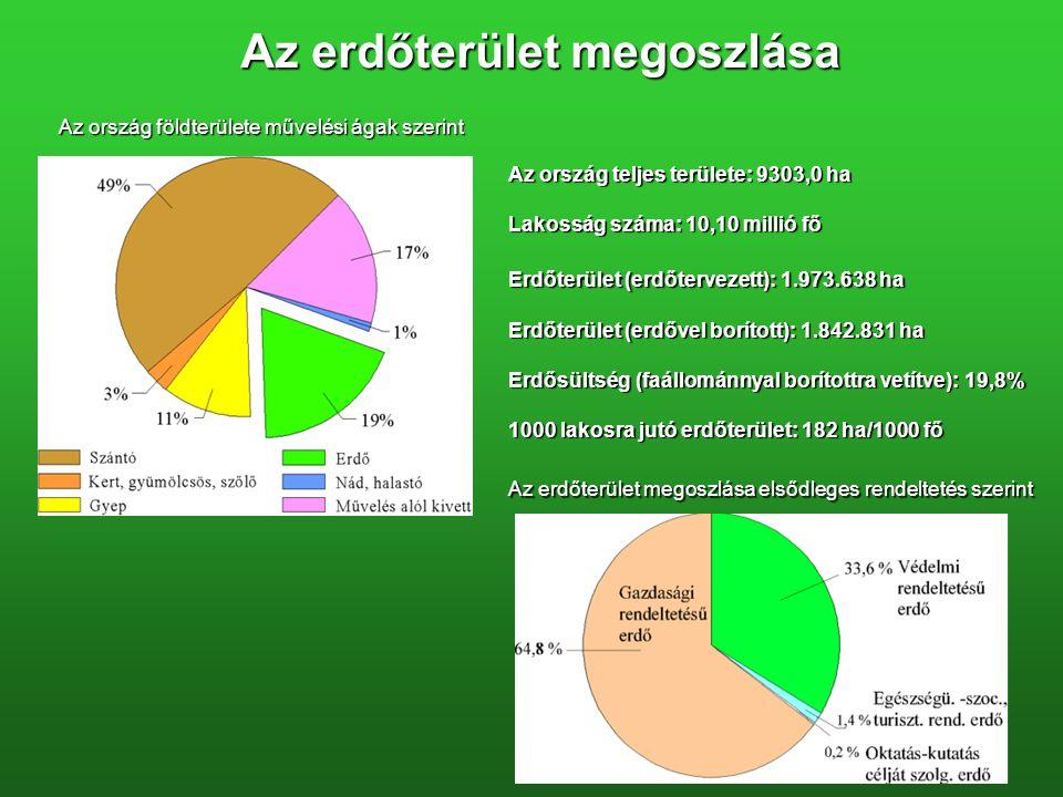Az erdőterület megoszlása