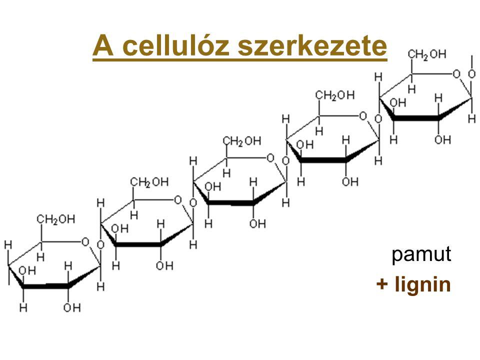 A cellulóz szerkezete pamut + lignin