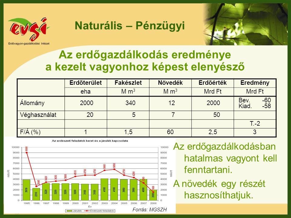 Az erdőgazdálkodás eredménye a kezelt vagyonhoz képest elenyésző