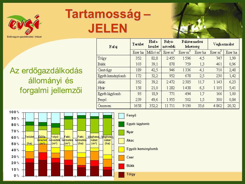 Az erdőgazdálkodás állományi és forgalmi jellemzői
