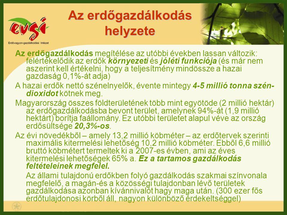 Az erdőgazdálkodás helyzete