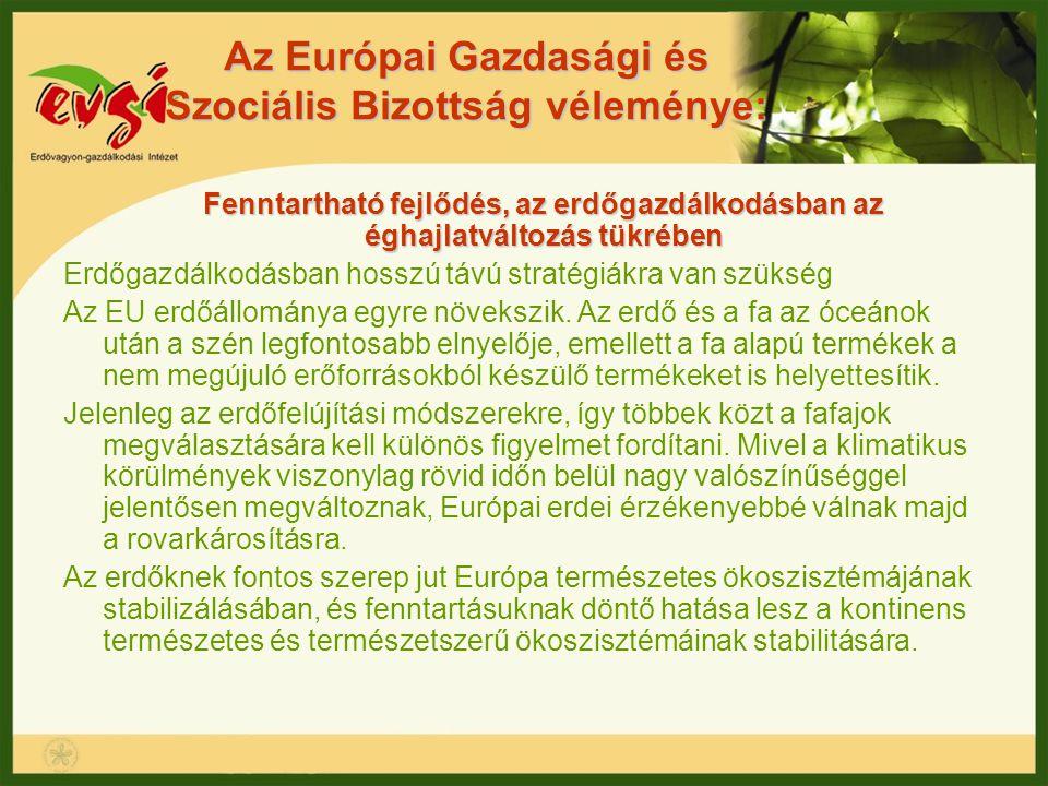 Az Európai Gazdasági és Szociális Bizottság véleménye: