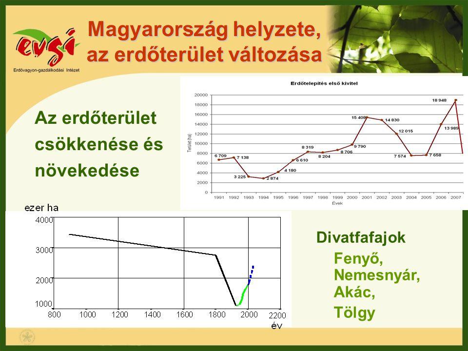 Magyarország helyzete, az erdőterület változása