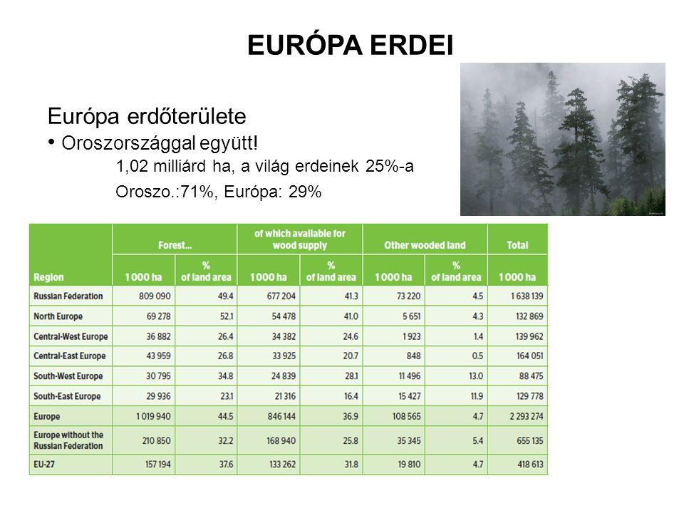 EURÓPA ERDEI Európa erdőterülete Oroszországgal együtt!