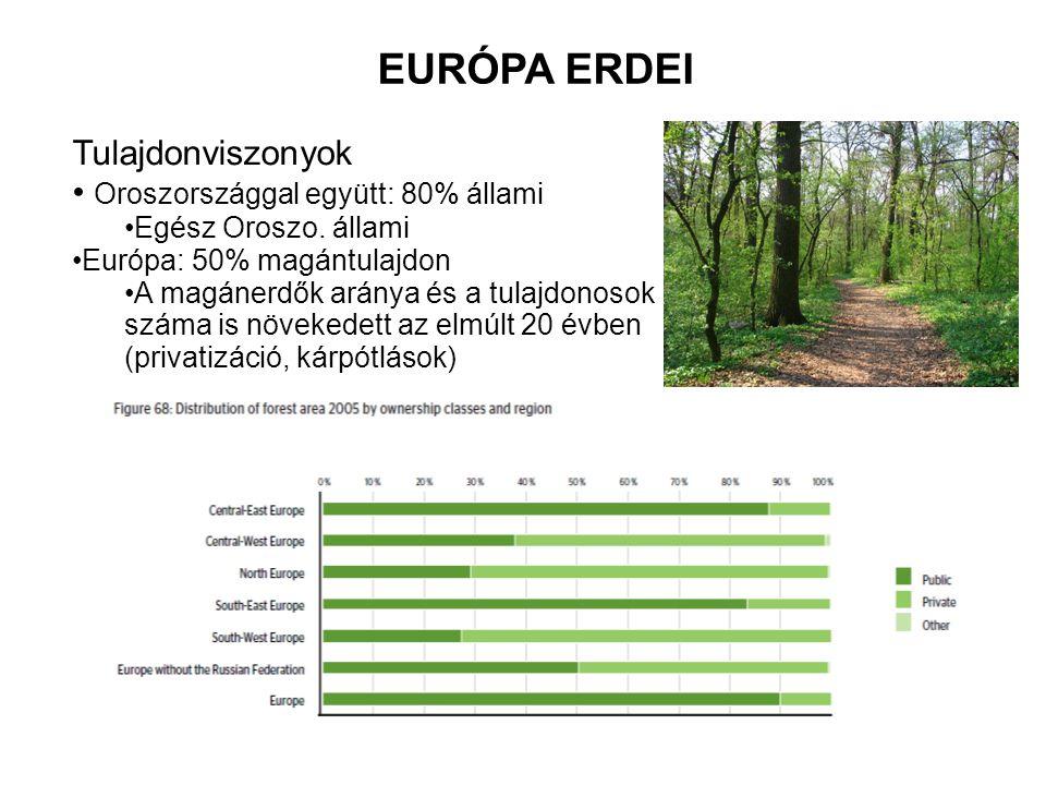 EURÓPA ERDEI Tulajdonviszonyok Oroszországgal együtt: 80% állami