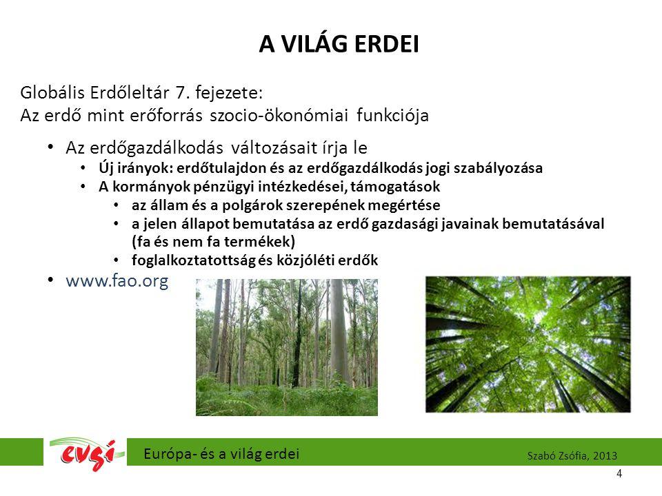A VILÁG ERDEI Globális Erdőleltár 7. fejezete: