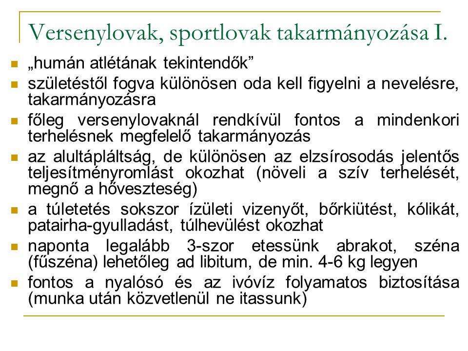 Versenylovak, sportlovak takarmányozása I.