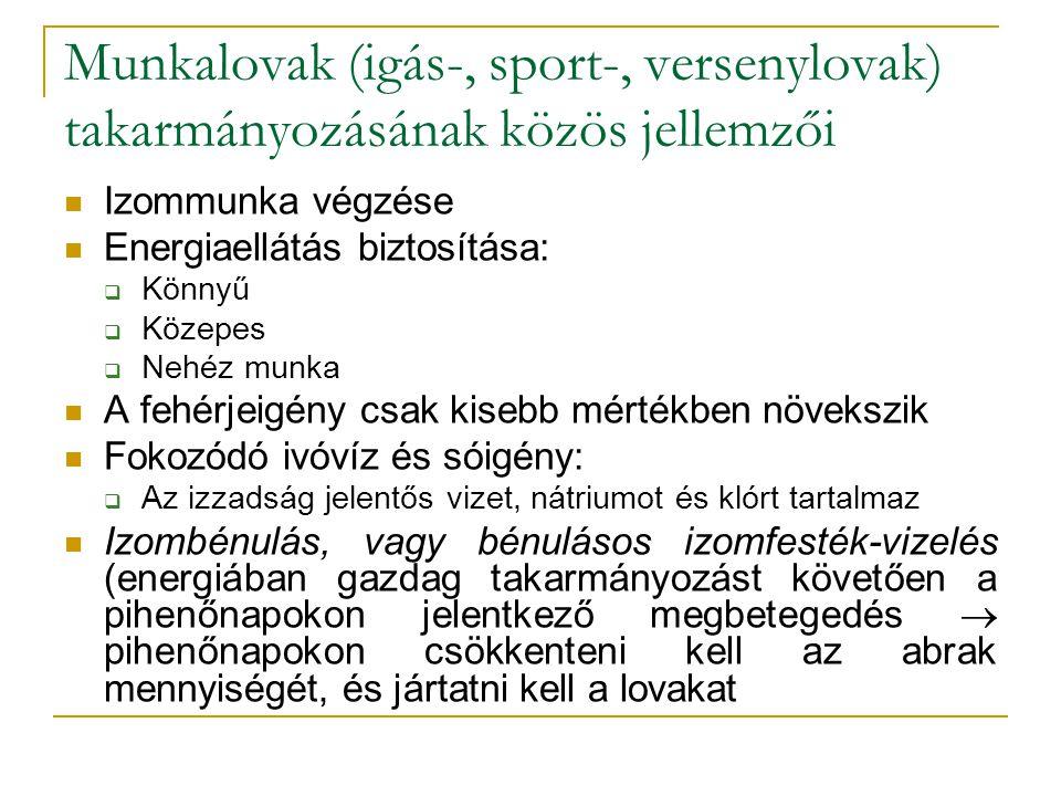 Munkalovak (igás-, sport-, versenylovak) takarmányozásának közös jellemzői
