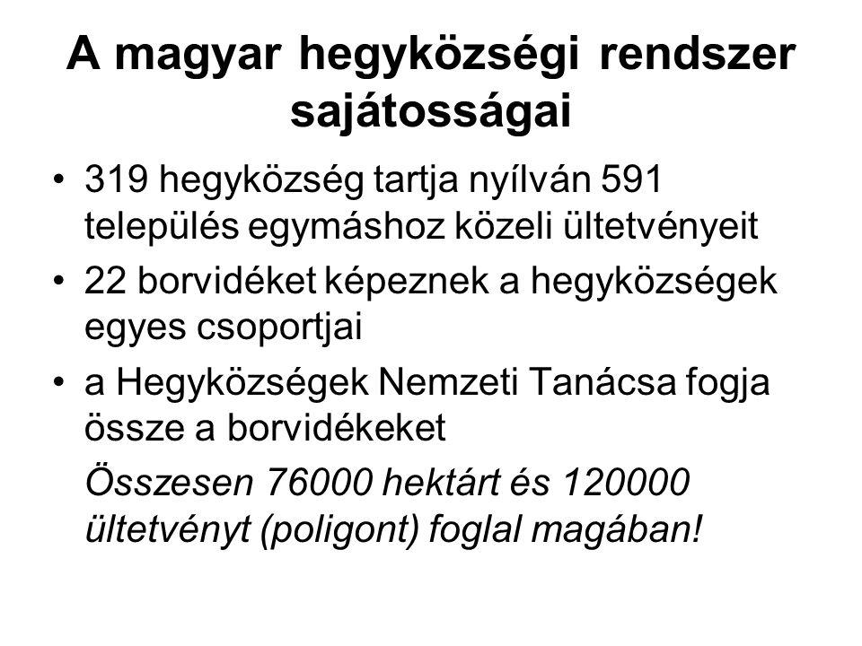 A magyar hegyközségi rendszer sajátosságai
